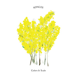KONCOS『Colors & Scale』